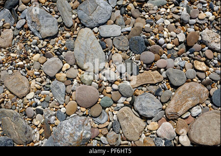 stones or pebbles on a South Devon beach England UK - Stock Photo