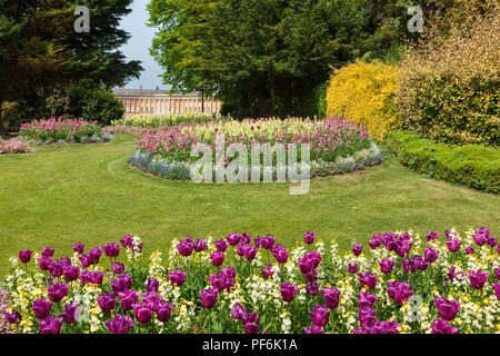 Flower beds in Royal Victoria Park, Bath, England with the famous Royal Crescent seen in the distance behind. - Stock Photo