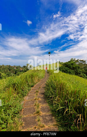 Campuhan (Sayan) Ridge Walk, Ubud, Bali - Stock Photo