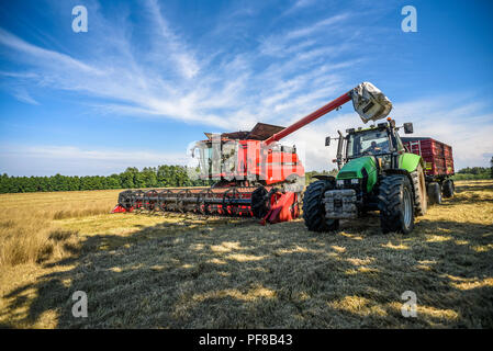 Harvester on the field during harvest, summer in Poland. - Stock Photo