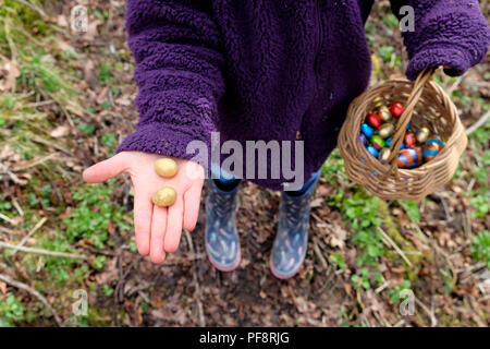 A girl holding out her hand to to show two chocolate Easter eggs from a basket full colourful eggs collected on an Easter egg hunt UK  KATHY DEWITT - Stock Photo