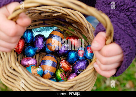 Closeup of chocolate Easter eggs wrapped in colourful foil from various stores in a basket collected by a child on an Easter egg hunt UK  KATHY DEWITT - Stock Photo