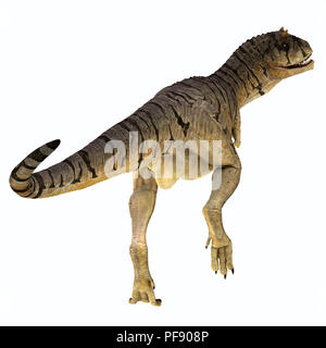 Carnotaurus sastrei Dinosaur Tail - Carnotaurus was a carnivorous theropod dinosaur that lived in Patagonia, Argentina during the Cretaceous Period. - Stock Photo