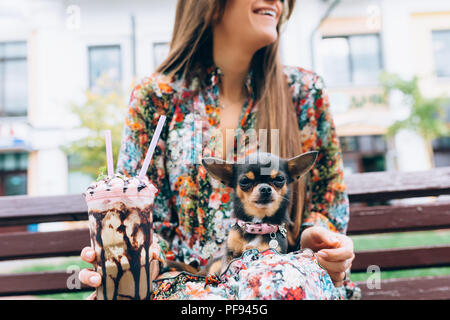 Young woman in sunglasses with little puppy. Outdoor lifestyle portrait of stylish pretty smiling female and her small dog. - Stock Photo