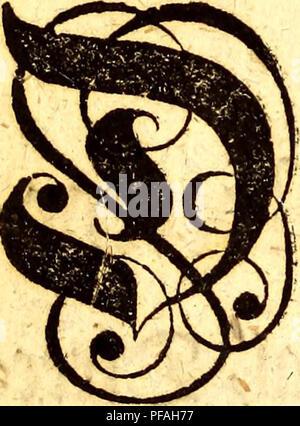 . Det første forsøg paa Norges naturlige historie : førestillende dette kongeriges luft, grund, fielde, vande, vaexter, metaller, mineralier, steen-arter, dyr, fugle, fiske og omsider indbyggernes naturel, samt saedvaner og levemaade. Natural history; Botany. $m§ $ty â * .©tøtøltøe Ex- cellence, fra mandat af> tafcfHfltgeVrøwr mofe mig ^at: lafeet ftenfee/ et t)et feen jtøjfe Sforfrø, fom f^ms* at tilegne ^ettt ^ette ©fttft/ og t)eM>eÂ« £e^lfgfte& offentKg at fwifene mm unfeerfeantge gorpligtelfe*. Please note that these images are extracted from scanned page images that - Stock Photo