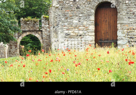 France, Vallee de la Somme, poppy field in front of an old stone building. - Stock Photo