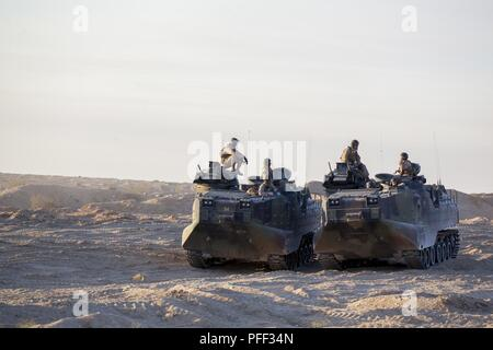 Marines with Delta Company, 4th Assault Amphibious Vehicle Battalion, 4th Marine Division, stage their assault amphibious vehicles for an obstacle clearing detachment practical application during Integrated Training Exercise 4-18, aboard Marine Corps Air Ground Combat Center Twentynine Palms, California, June 12, 2018. The OCD training was conducted to prepare Marines for the execution of a live-fire combined arms breach in which mechanized units will detonate a 1,000 pound mine clearing charge. - Stock Photo