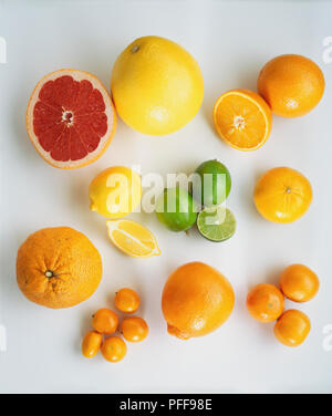 Selection of fresh citrus fruit, pink Grapefruits, Oranges, Tangerines, Limes, Lemons, Manderin, Clementin, Satsumas - Stock Photo