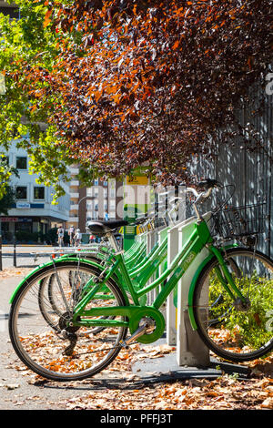 Bike sharing cycling rack dock during summer in Piacenza, Italy - Stock Photo