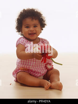 Baby girl sitting on floor, wearing pink and white gingham dress with fabric flowers on pockets and chest, holding Gerbera daisy. - Stock Photo