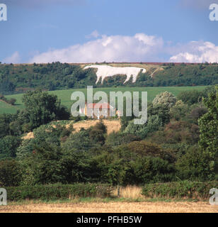Great Britain, England, Yorkshire, Sutton Bank, Kilburn White Horse, figure of a white horse carved into limestone hill, created in the 19th century - Stock Photo