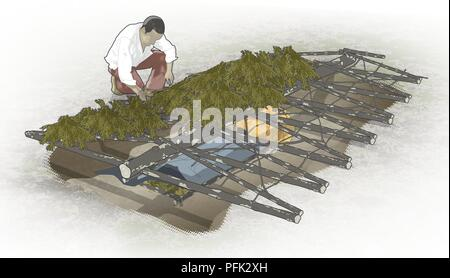 Digital illustration of man laying covering of short branches on roof of natural hollow - Stock Photo