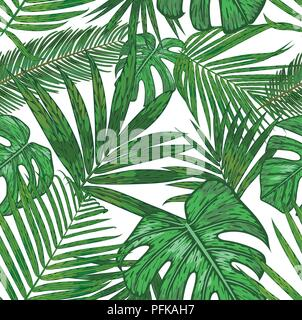 Vector  seamless pattern of  tropical palm leaves. beautiful foliage background of the areca, sago, howea, philodendron  in watercolor style on a isol - Stock Photo