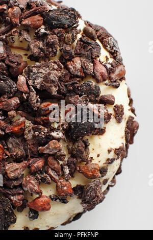Disc of French Aromes au Gene de Marc cow's milk cheese covered with dried pressed grapes, close-up - Stock Photo