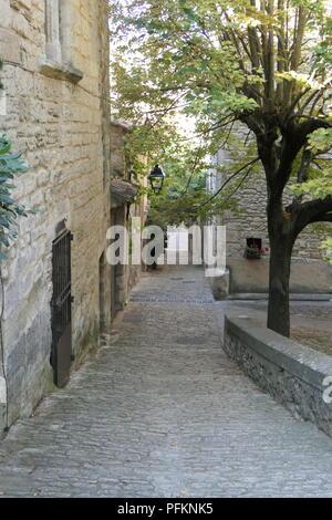 Rue - Stock Photo