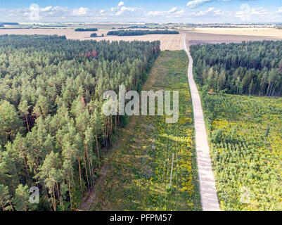 aerial top view of country road through fields and forests in summer - Stock Photo