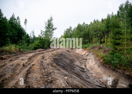 system of drainage ditch in the woods for water colleting - Stock Photo