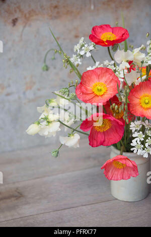 Icelandic poppy arrangement - Stock Photo