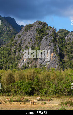 View of farm fields and rock formations in Vang Vieng, Laos. Vang Vieng is a popular destination for adventure tourism in a limestone karst landscape. - Stock Photo
