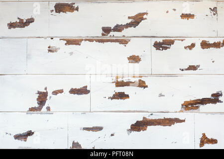 textured wooden background, old white surface with a worn texture of the wood. - Stock Photo