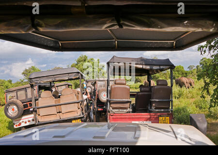 Horizontal view of a traffic jam at Udawalawe National Park in Sri Lanka. - Stock Photo