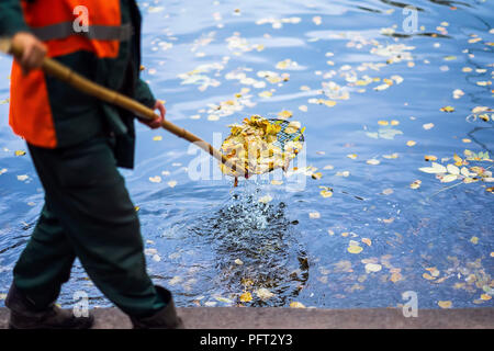 Abstract cleaning swimming pond in the park from fallen leaves with skimmer, autumn, job in the city outdoors, seasonal mood - Stock Photo