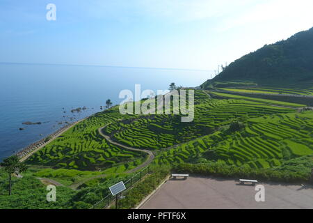 Senmaida rice terraces in Wajima, Japan - Stock Photo
