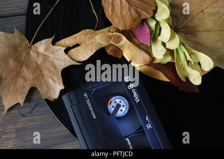 Autumn leaves and seed pods and Video 8 cassette and leaves on a vintage vinyl record - Stock Photo