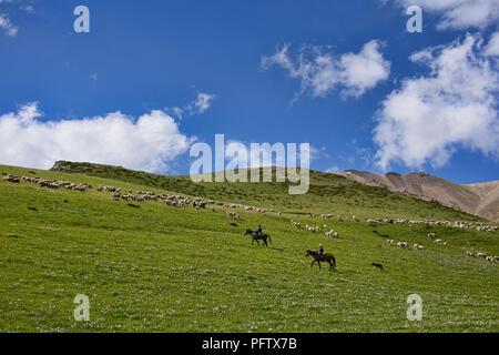 Kyrgyz horserider, Jyrgalan Valley, Kygyzstan - Stock Photo