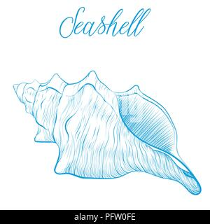 Sea shell Hand drawn blue linear vector illustration.Marine wildlife decorative designer graphic art element isolated. Perfect for invitations, greeti - Stock Photo