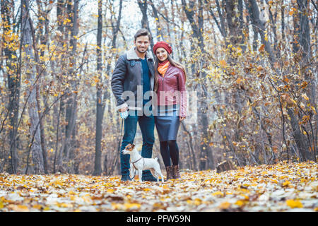 Couple in fall having walk with dog in a park - Stock Photo