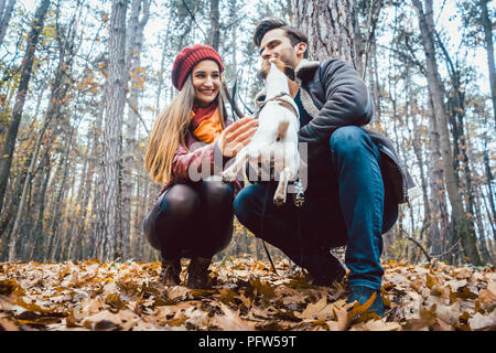 Couple of woman and man playing with their dog in fall - Stock Photo