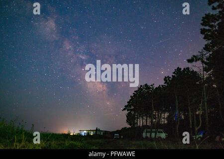 Camp forrest with the Milky Way at night - Stock Photo