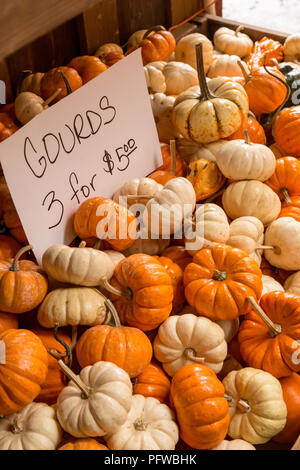 Hood River, Oregon, USA.  Small white and orange gourds for sale at a produce market. - Stock Photo
