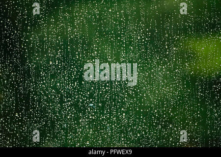 Montreal,Canada,19 August,2018.Raindrops on a window pane aganist a green background.Credit:Mario Beauregard/Alamy Live News - Stock Photo