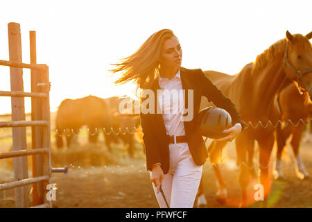 portrait of elegant rider woman with whip stands against the backdrop of horses at sunset. soft light - Stock Photo