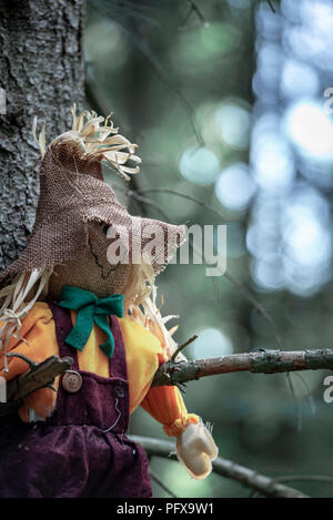 Close-up with a scarecrow, left hanging between two tree branches, without leaves, in the dark woods. A concept for Halloween. - Stock Photo