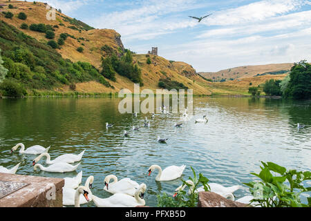 St Margaret's Loch and ruins of St Anthony's chapel in the background, Edinburgh, Scotland. - Stock Photo