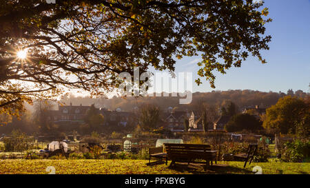 sunny morning, bench standing in the garden under a tree, typical english town sen in the distance - Stock Photo