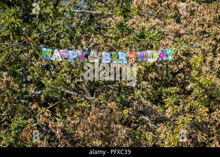 Detail of a Happy Birthday message stretched across the branches of a fallen oak tree, the remnants of a birthday party in Brockwell Park, on 6th August 2018, in London, England. - Stock Photo