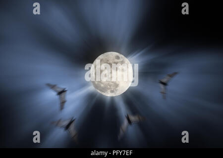 Photo composition with full moon at night, bats in flight and light beams (added some digital noise)