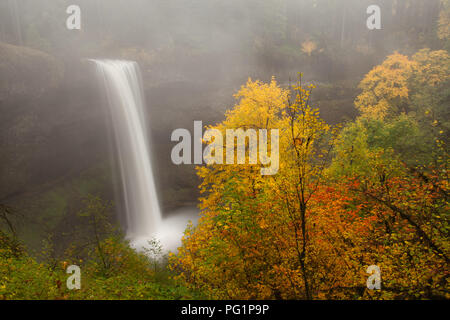Misty South Falls in autumn in Silver Falls State Park in Oregon - Stock Photo
