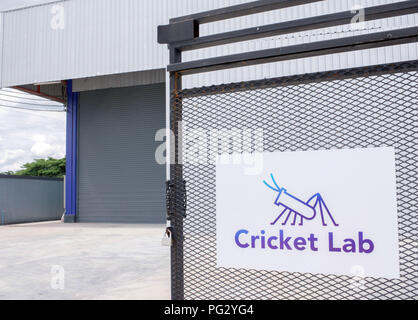 Chiang Mai, Thailand. 12th July, 2018. The Cricket Lab logo hangs at the entrance of the cricket farm. In the factory of the Czech Husek, domestic crickets are bred, dried and ground. The insect powder is exported. Credit: Visarut Sankham/dpa/Alamy Live News - Stock Photo