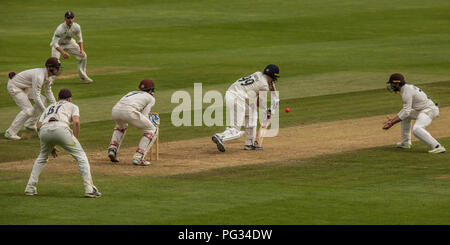 London, UK. 22 August 2018. Graham Onions batting for Lancashire against Surrey on day four of the Specsavers County Championship game at the Oval. David Rowe/Alamy Live News - Stock Photo