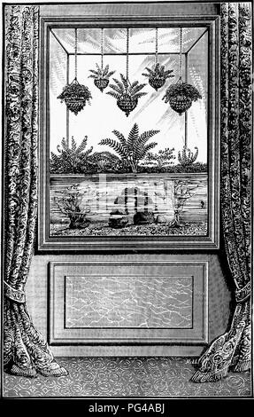 . Fresh-water aquaria: their construction, arrangement, and management, with full information as to the best water-plants and live stock to be kept, how and where to obtain them, and how to keep them in health. Aquariums. FIG. 28. AQUARIUM AND FERNERY COMBINED.. Please note that these images are extracted from scanned page images that may have been digitally enhanced for readability - coloration and appearance of these illustrations may not perfectly resemble the original work.. Bateman, Gregory Climenson. London, L. U. Gill - Stock Photo