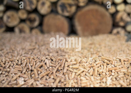 Pile of Oak and pine pellets in front of pile of wood - Stock Photo