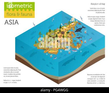 Isometric 3d Asian flora and fauna map constructor elements. Animals, birds and sea life isolated on white big set. Build your own geography infograph - Stock Photo