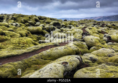 A path trough the mossy field at cloudy day in Iceland - Stock Photo