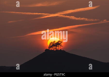 Sunset at the iconic Colmer's Hill in Dorset - Stock Photo
