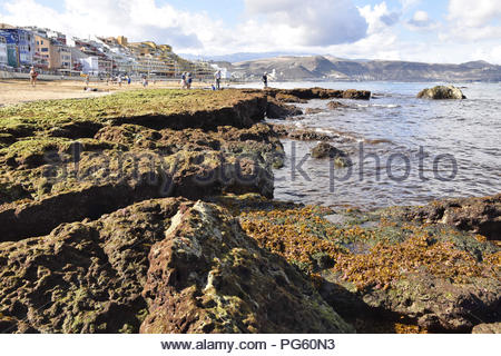 Playa de las Canteras beach - volcanic rocks exposed at low tide. Located in city of Las Palmas, capital of Gran Canaria Canary Islands Spain. - Stock Photo